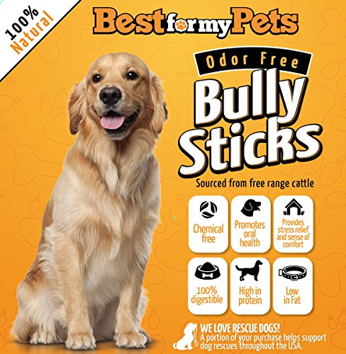 Bully Sticks Odor-Free - 6-Inch All-Natural Dog Treats Premium Beef Dog Chews, 8-Ounce Bag