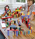 255 Piece Wooden Domino Rally Race STEM Based Learning Set in Bright Colors and Fun Patterns