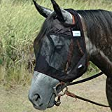 Product review for Cashel Quiet Ride Standard Fly Mask No Ears or Nose - Size: Horse