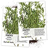 Seed Needs, Summer Savory Herb (Satureja hortensis) Twin Pack of 500 Seeds Each Non-GMO