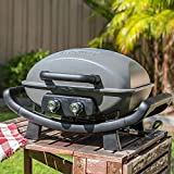 Nexgrill Fortress 2 Burner Cast Aluminum Table Top Gas Grill, Heavy Duty, Push and Turn Ignition with Built-In Thermometer
