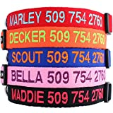 Personalized Dog Collar, Custom Collars Embroidered w/Pet Name & Phone Number - Blue, Black, Pink, Red & Orange Collars for Boy & Girl Dogs; 4 Adjustable Sizes: XSmall, Small, Medium, Large