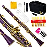 Glory B Flat Clarinet with Second Barrel, 11reeds,8 Pads cushions,case,carekit and more -Purple/Gold keys