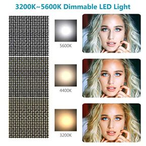 Neewer-960-LED-Video-Light-Photography-LED-Lighting-Dimmable-3200-5600K-Metal-Frame-with-Barndoor-DC-AdapterBattery-Power-for-Studio-Portrait-Product-Video-Film-Shooting-Battery-Not-Include