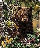 Regal Comfort Black Bear Woods Faux Fur Blanket 79' x 96' Queen/Full Size