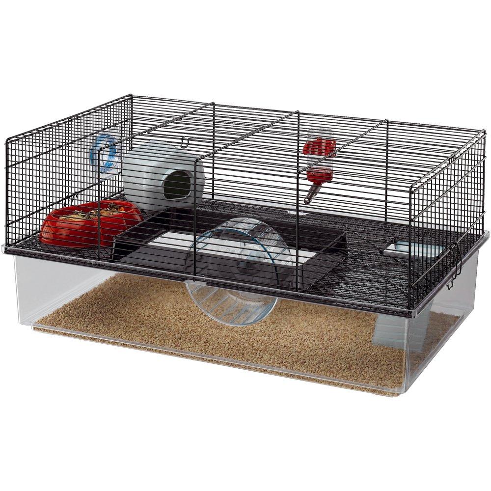 Juegos para hamster negrohttps://amzn.to/2KUZOPN