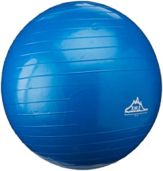 Black Mountain Products Static Strength Exercise Stability Ball with Pump, 2000 lb/55cm, Blue