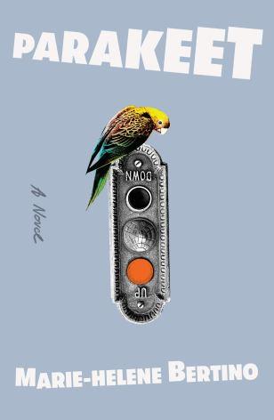 Parakeet: A Novel: Bertino, Marie-Helene: 9780374229450: Amazon ...