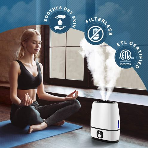 Best Humidifier On Amazon