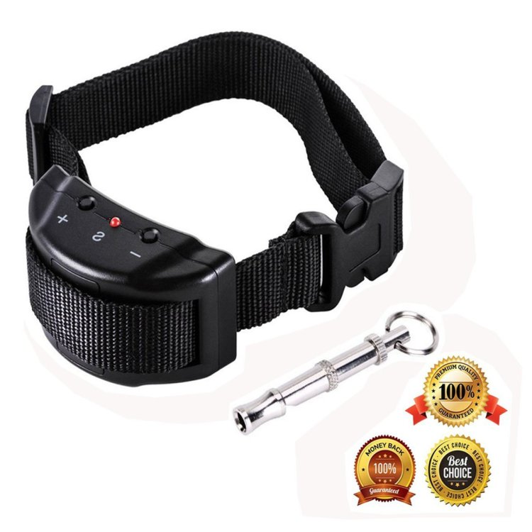 3bb17bef4372 Guía para comprar collares de adiestramiento baratos - Tecnocio Blog