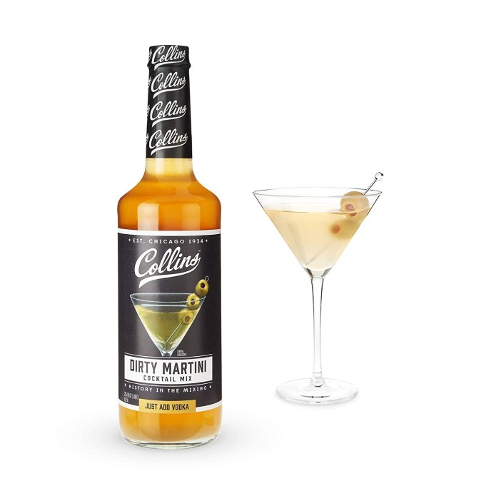 Amazon Com Collins Consumables Collins Dirty Martini Mix Made With Real Olive Brine For The Bold Flavor You Need Classic Cocktail Recipe Ingredient Dirty Martini 25 4 Fl Oz Grocery Gourmet Food