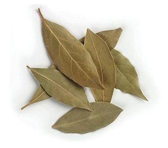 Bay leaf的圖片搜尋結果