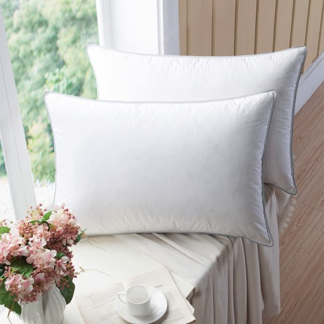 Best Pillow for Neck Pain and Headaches