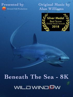 Watch Beneath the Sea | Prime Video