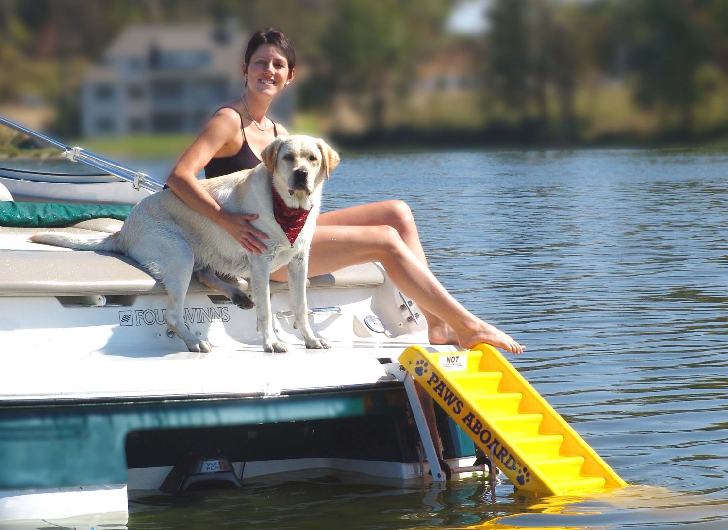 Dog Boat Ramp Review