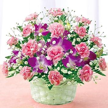 「花キューピット」の画像検索結果
