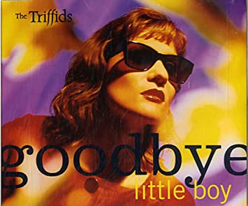 Image result for the triffid goodbye little boy