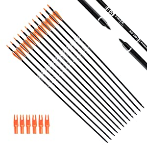 Best Arrows for Compound Bow