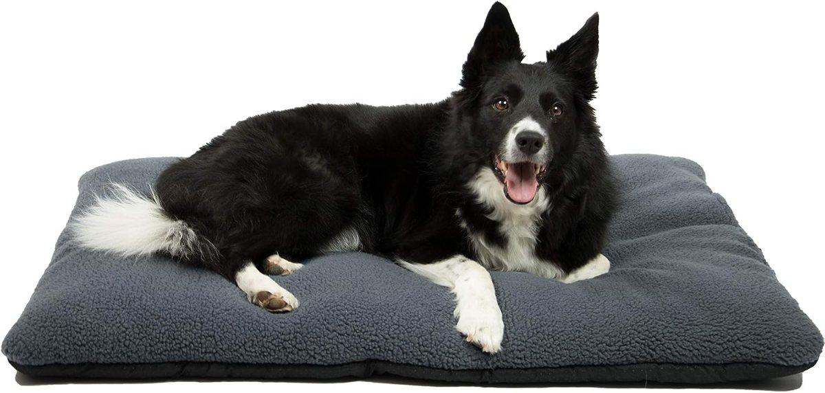 Cama para Perros, colchoneta para Mascotas