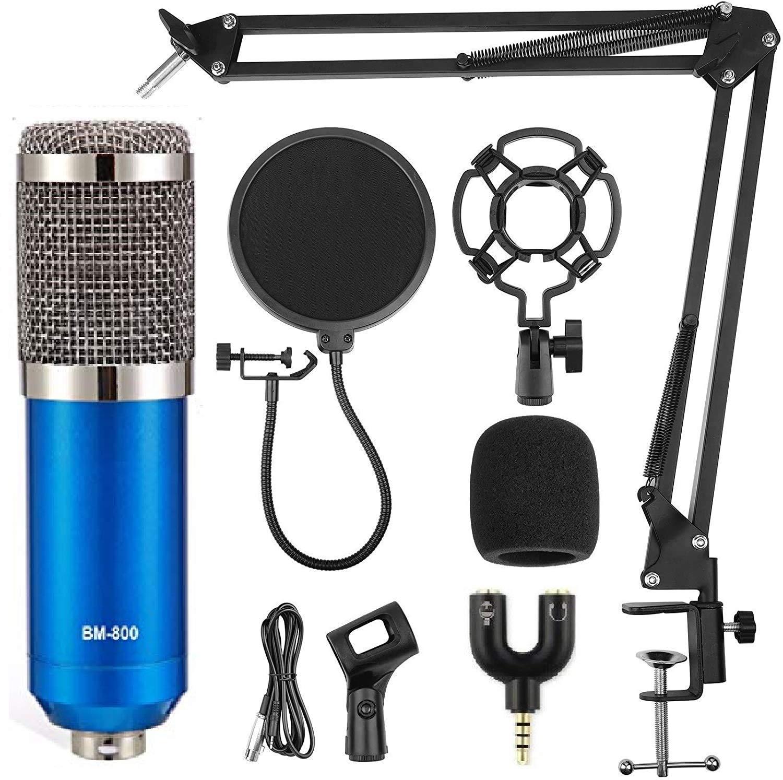 BM 800 Blue Professional Condenser Microphone