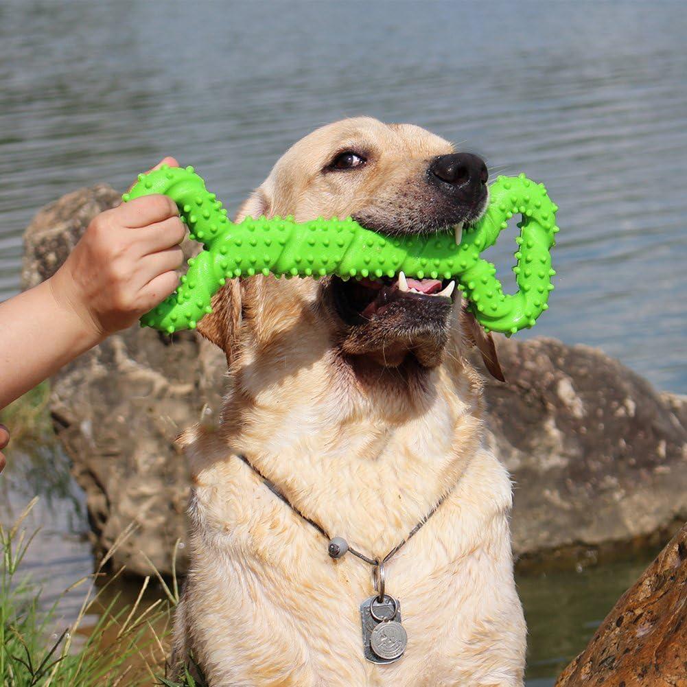 Juguetes morder para perros, 13 pulgada goma juguete forma de hueso con superficie convexa resistente Juguetes interactivos para cachorro de perros pequeños medianos y grandes