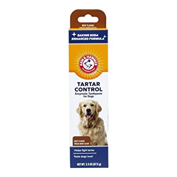 Arm & Hammer Dog Dental Care Tartar Control Enzymatic Toothpaste for Dogs | Reduces Plaque & Tartar Buildup | Safe for Puppies, 2.5 ounces, Beef Flavor