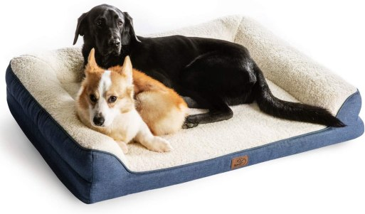 71vXUq7kTUL. AC SL1500 Best Dog Bed For Husky 2021 And Buying Guide