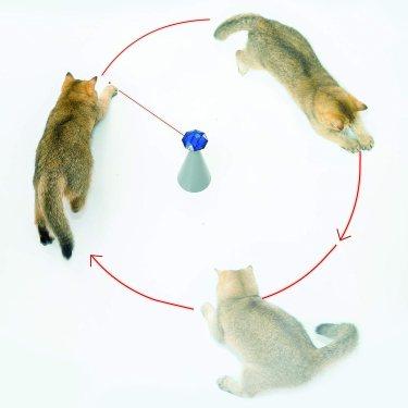 Juguete láser para gatos de Friends Forever (análisis) 1