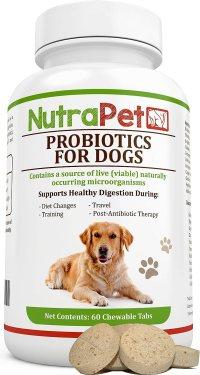 Los mejores probióticos para perros de 2020 (Análisis) 12