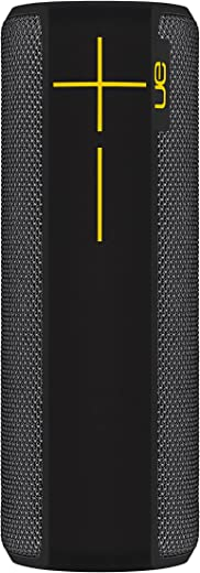 Ultimate Ears Boom 2 Lite Enceinte sans Fil Portable Bluetooth, Son à 360 Degrés, Etanche, Anti-Choc, Connexion Multiple, Batterie 15h - Panther Noire