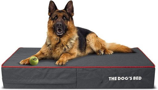 81AT1Fq03jL. AC SL1500 Best Dog Bed For Husky 2021 And Buying Guide