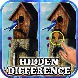 Hidden Difference: Summer Secrets