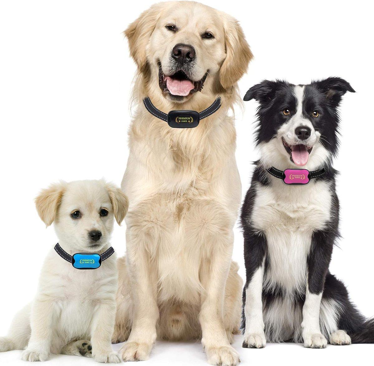 Premium Paws Collar Anti Ladridos, Collar Antiladridos, pequeño Mediano Grande Perro