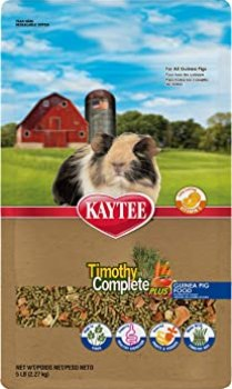best guinea pigs food
