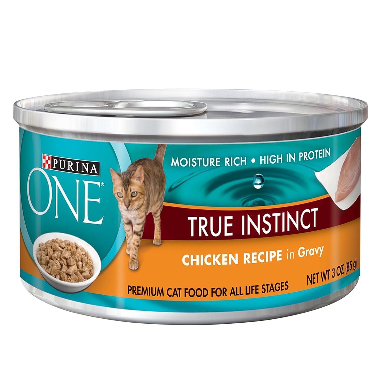 Best Wet Cat Food For Sensitive Stomach Uk