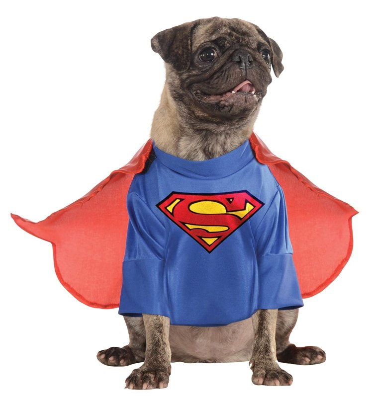 Superman Costume for Pugs