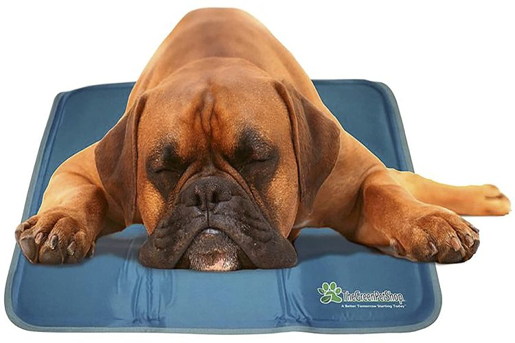 Gel Cooling Pad for Dogs