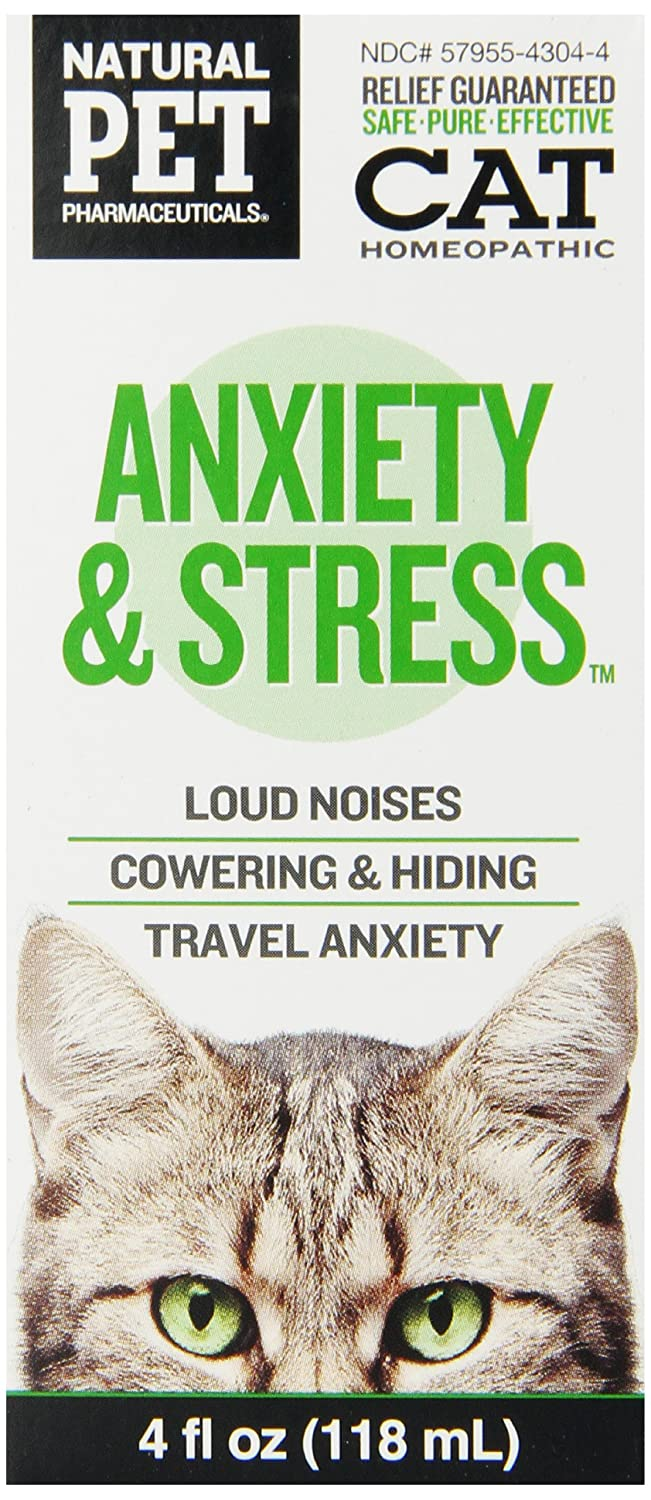 Homeopathic Remedy for Stressed Cats