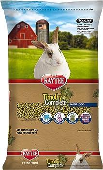 Can Rabbits Eat Cilantro