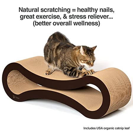 What-are-the-best-cat-scratchers