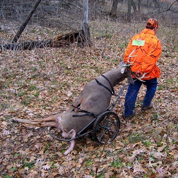 Benefits of a Deer Cart