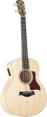 Best Taylor Acoustic Guitar for Beginners