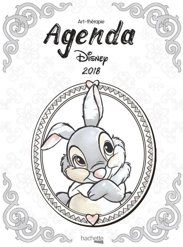 Agenda Art-Thérapie Disney 23 : Hachette: Amazon.de: Bücher