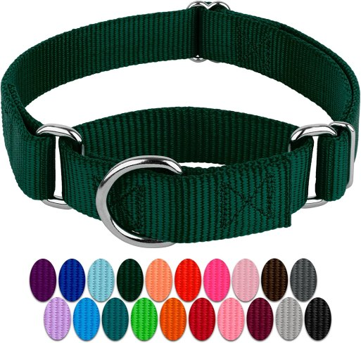 81sijjqaTVL. AC SL1500 Best Dog Collar For Pulling That Keep Your Walks Struggle-Free