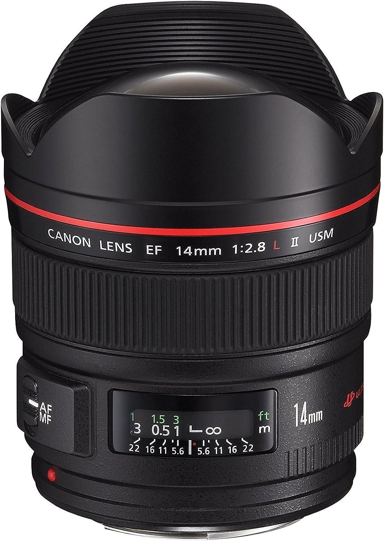 Amazon.com : Canon 14Mm F/2.8L Ef Ii Ultra Wide-Angle Lens Usm ...