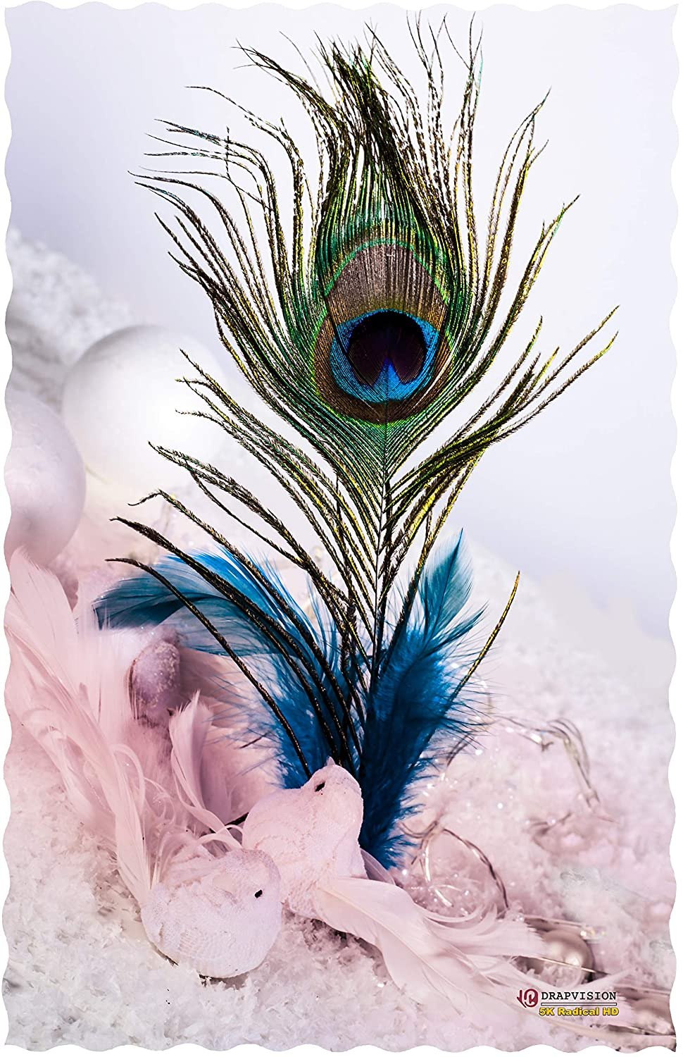Drapvision Private Limited 5k Radical Hd Peacock Feather God Krishna Poster For Room Home And Offices Paper 11 X 17 Inch Multicolour Amazon In Home Kitchen