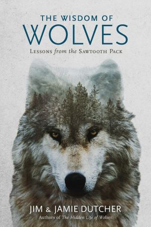 Amazon.com: The Wisdom of Wolves: Lessons From the Sawtooth Pack  (9781426218866): Dutcher, Jim, Dutcher, Jamie, Bekoff, Marc: Books