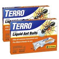 Terro Ant Bait Review - T300B