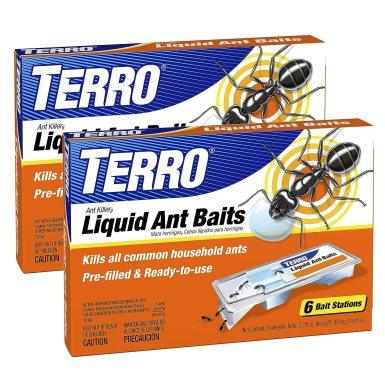 Terro Ant Bait Review