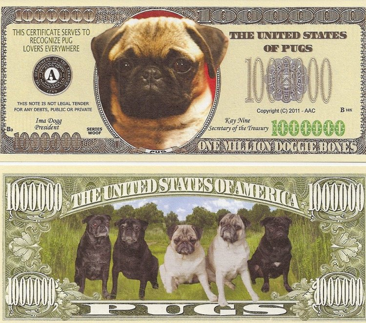 Pug Million Dollar Note